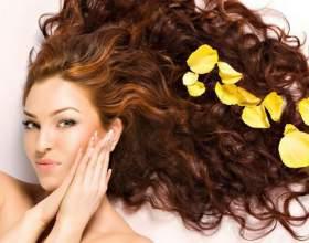 11 Линеек средств от phyto: красота волос обеспечена фото