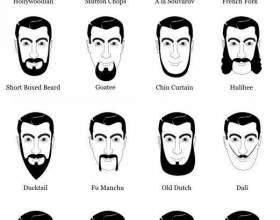 Виды бород: по типу лица фото