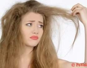 Шампунь для сухих волос – правила и критерии выбора фото