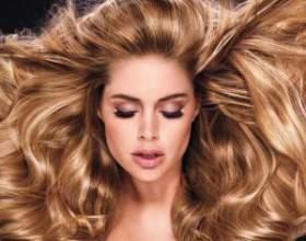 Обзор масел для волос эльсеф: экстраординарное и дисциплинирующее фото