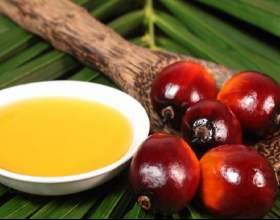 Пальмовое масло для волос - польза, рецепты масок фото