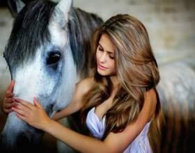 Популярность лошадиного шампуня фото